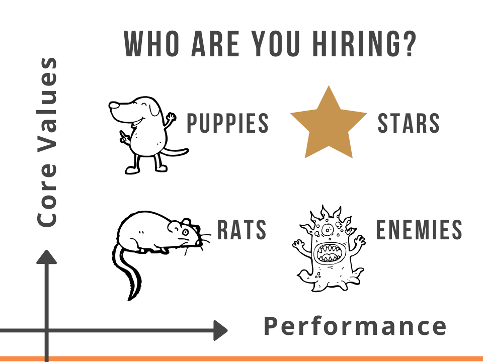 Alex Freytag Puppies Stars Hiring